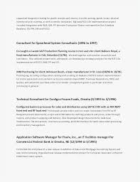 Cfo Resume Examples Magnificent 48 Cfo Resumes New Template Best Resume Templates