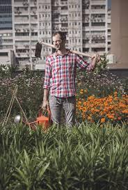 pol fàbrega how to start your own vegetable garden