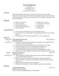 Example Of Resume For Sales Position Examples Of Resumes