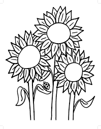 Small Picture Sunflower Coloring Pages For Adults Archives In Sunflower Coloring