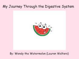 my journey through the digestive system books children s   my journey through the digestive system books children s stories online storyjumper