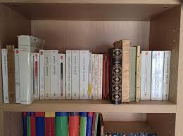 madame bovary essay topics madame bovary essay bookrags com