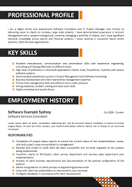 Professional Resume Template Writing A 275 Saneme
