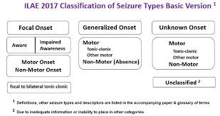 Epilepsy Explained Epilepsy Australia Ltd