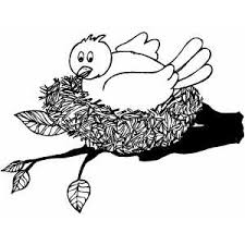 Small Picture Bird In The Nest Coloring Page