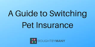 Seib is a good option as it doesn't just give cover for the animal and any public liability, you can also opt to. A Guide To Switching Pet Insurance Bought By Many