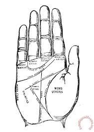 Palmistry Chart 1885