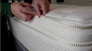 inspecting a mattress for bed bugs