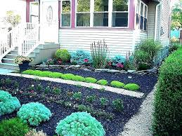black cedar mulch natural vs home depot