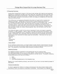 Executive Summary Outline Examples Format