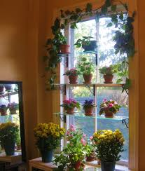 Garden Window For Kitchen Window Kitchen Garden Window Incredible Decorations Kitchen