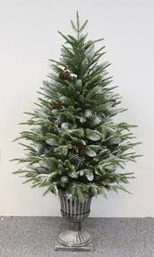 The Outdoor Frosted Fir (3ft to 4ft)
