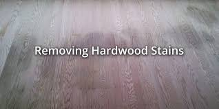 hardwood floor cleaning remove cat urine from laminate floor how to get rid of dog urine