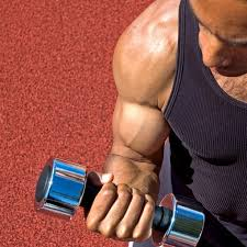 10 best arm workouts for men bicep and