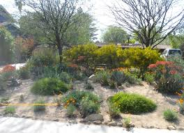Small Picture How To Design A Native Garden Australia The Garden Inspirations
