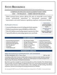 CFO Resume Sample Vice President Of Finance Director Of Finance Enchanting Cfo Resume
