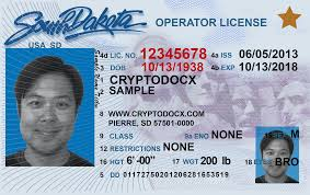 Holograms Markings Dakota Driver South License Uv