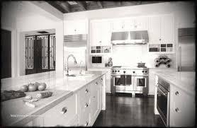 custom kitchen cabinets tampa lovely lovely used kitchen cabinets for tampa fl