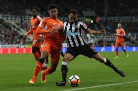 Luton town football club is an english football club based since 1905 at kenilworth road, luton, bedfordshire. Newcastle United 5 Things We Learned From The 3 1 Win Over Luton Town
