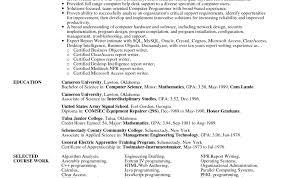 Fine Professional Resume Service New York Contemporary