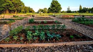 the community foundation of p e i is offering grants for new community gardens or improvements to existing ones stratford community gardens facebook
