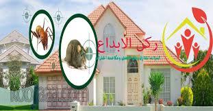 شركة مكافحة حشرات بتبوك 0507240005 البق والصراصير و النمل الابيض والفئران