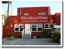Cat House Los Angeles Classy Shop Design Decoration
