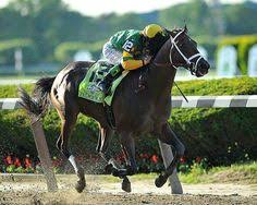 2013 Belmont Stakes Results Chart 28 Best Sport Photos Images Beautiful Horses Pretty
