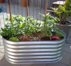Small Picture Raised Garden Bed 10 Tips To Get The Best From Yours 1