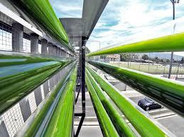 Algae Farm Design Six Green Designs Powered By Algae Engadget