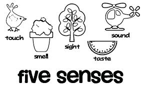 Coloring Sheets Preschool 5 Senses Coloring Sheets Free Preschool