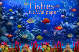 moving fish wallpaper for phones.  Moving Screenshot Image With Moving Fish Wallpaper For Phones V