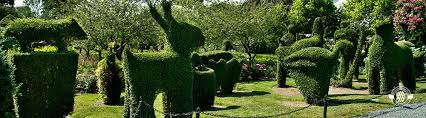 animal garden. Fine Animal Intended Animal Garden T