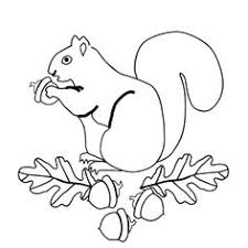 Small Picture Printable Squirrel Coloring Pages Coloring Me embroidery