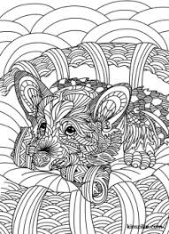 Cute Zentangle Dog Coloring Page Cats Dogs Coloring Pages For