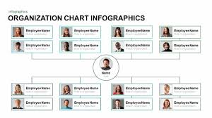 Infographic Organization Chart Template For Powerpoint And