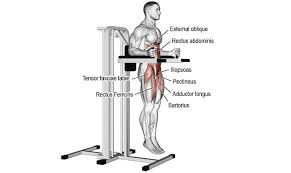Chair Gym Exercise Chart Captains Chair Exercise Top 3 Variations To Transform Your