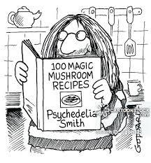 psychedelia smith cook book gordon ramsay coloring