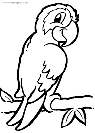 bird animal coloring pages