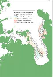 Historical Green Lipped Mussel Distribution In The Inner