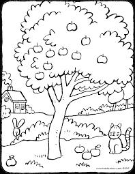 Appelboom Kiddicolour
