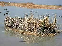 Boat Blinds For Duck Hunting Tips To Choose And Buy Duck Hunting ...