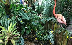 the tropical gardens of key west