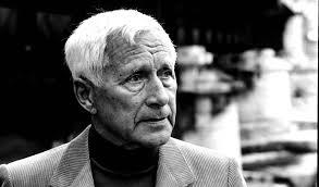 Entrevista con el escritor alemán Ernst Jünger: La memoria de un siglo    Babelia   EL PAÍS