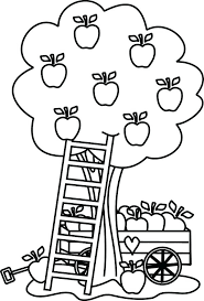 Apples Coloring Pages Apple Coloring Pages For Preschoolers Free