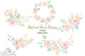 Watercolor Clipart Peach Peonies Free Download Corner Croft