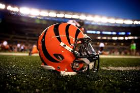 2592x1728 cincinnati bengals wallpapers 6 2592 x 1728