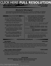 Resume Profile For Bartender Oneswordnet