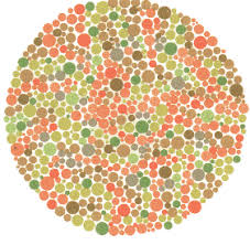 Color Vision Chart Pdf Ishihara Test For Color Blindness
