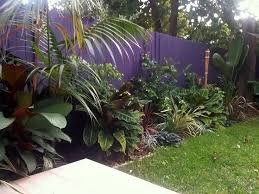 Small Picture Best 25 Tropical lawn and garden ideas on Pinterest Landscape